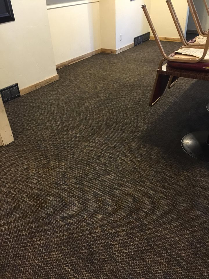 Carpet Cleaning Pet Stains Odor Removal In Ogden Ut