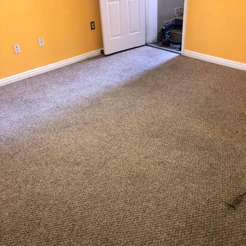 Carpet Cleaner Company In Ogden Ut